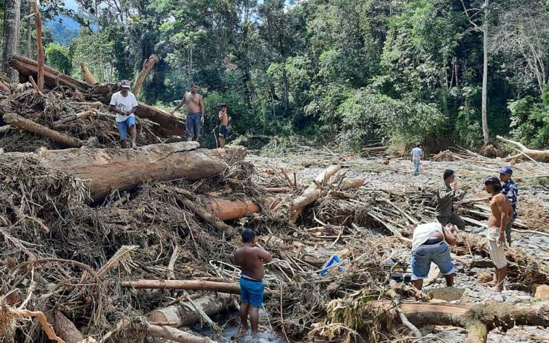 PUING-PUING: Sejumlah masyarakat berusaha mengumpulkan puing-puing yang berharga di tengah tumpukan kayu bekas terjangan banjir bandang di Bohorok, Kabupaten Langkat, Kamis (19/11).Camat Bahorok for Sumut Pos.
