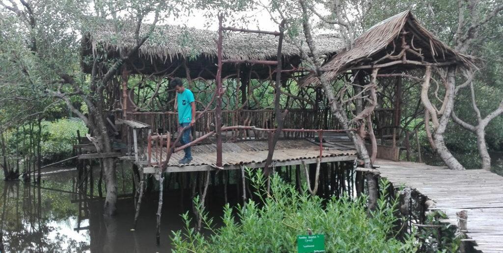 MANGROVE: Seorang pengunjung menikmati suasana hutanmangrove di Sicanang, Belawan. Ada  600 hektare Ruang Terbuka Hijau (RTH) di kawasan Medan Utara akan diubah peruntukannya menjadi kawasan pemukiman, perkantoran ataupun Industri.